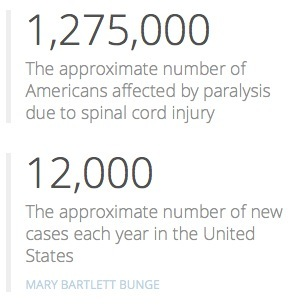 Americans affected by paralysis due to spinal cord injury