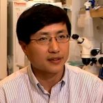 Axon Regrowth with UC San Diego Prof. Binhai Zheng