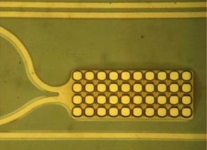 Detail of a single electrode of a multielectrode array.