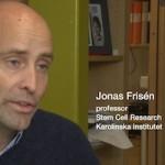 Jonas Frisén