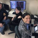 Neuroscientists at University of Alberta