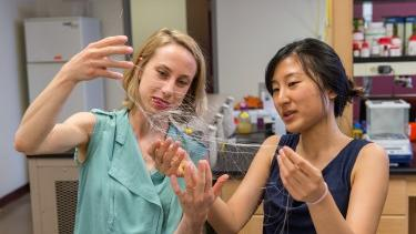 Center for Sensorimotor Neural Engineering researchers examine flexible neural recording… more MIT/Center for Sensorimotor Neural Engineering