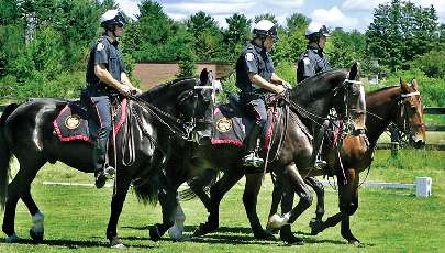 Four members of the Toronto Mounted Police were at Lockton Farms in Callander, Saturday, to perform during a fundraiser for Madison Lawson, 13, who is at Toronto's Hospital for Sick Children recovering from a spinal cord injury she suffered when she was thrown from a horse. The fundraiser, organized by Madison's coach,Paige Lockton-Wilde, raised more than $9,000.