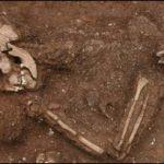 paraplegic-skeleton-324x205