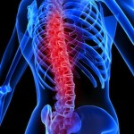 rewiring-a-damaged-spinal-cord